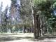Camping Colbun Vista Hermosa