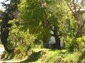 Camping el Crucero Nercón Chiloé