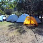 Parque Almendro