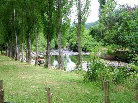 Sol-y-Sombra-camping