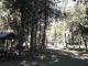 Camping Mora