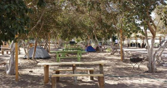 Camping Y Restaurante El Guayito