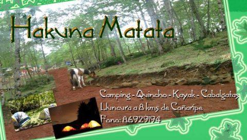 Hakunna-Matata