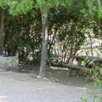 Camping El Mirador de Colbun