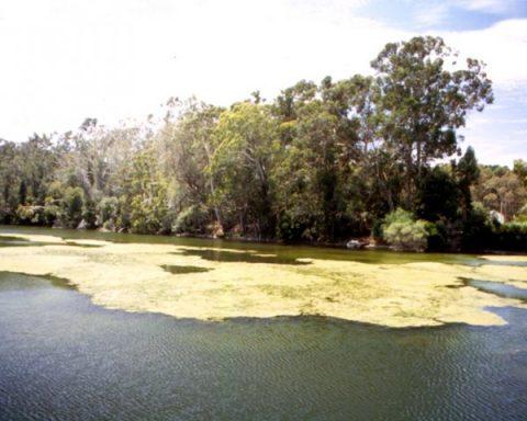 camping reserva nacional laguna torca