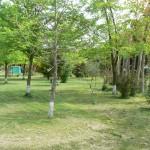 Camping Y Piscinas Perezoso