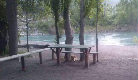 camping-don-juan-fuentes