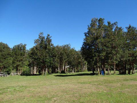 Foto-Camping