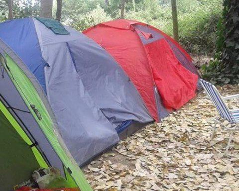 camping-las-araucarias-saltos-del-laja