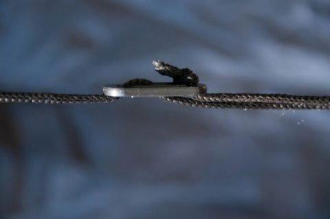 cuerdas de carpa
