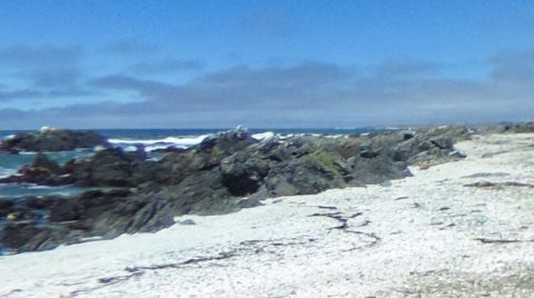 Camping en Punta de Choros